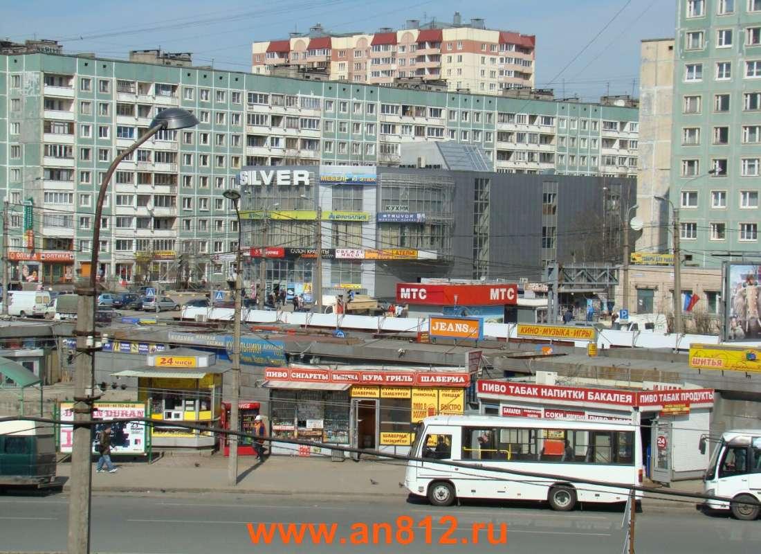 проститутка санкт петербург проспект просвещения
